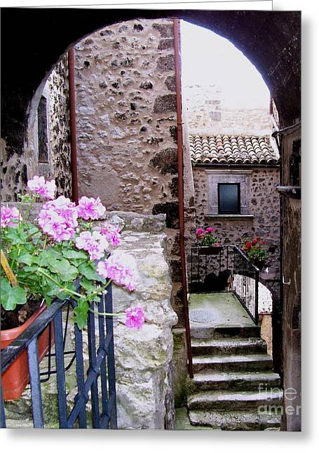 Greeting Card featuring the photograph Geraniums by Judy Kirouac