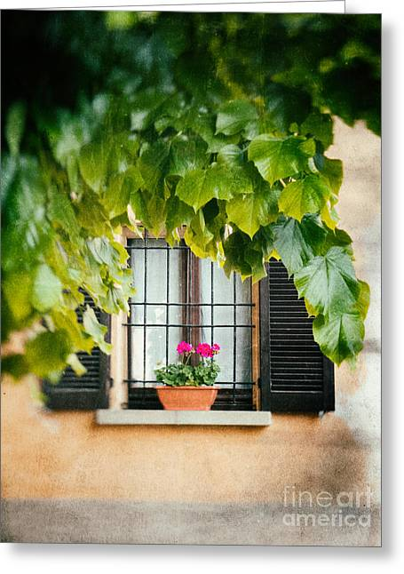 Greeting Card featuring the photograph Geraniums On Windowsill by Silvia Ganora