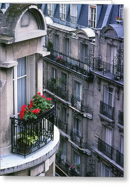 Geraniums - Paris Greeting Card