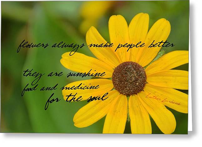 Gerber Daisy Quote Greeting Card by JAMART Photography
