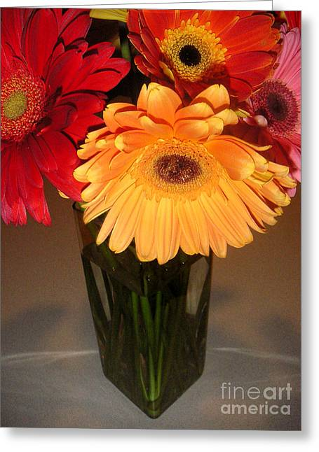 Gerbera Daisies - Vased Greeting Card by Lucyna A M Green