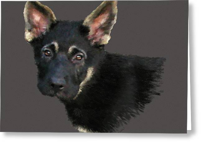 German Shepard Puppy Greeting Card by Kathie Miller