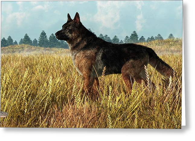 German Shepherd Greeting Card by Daniel Eskridge