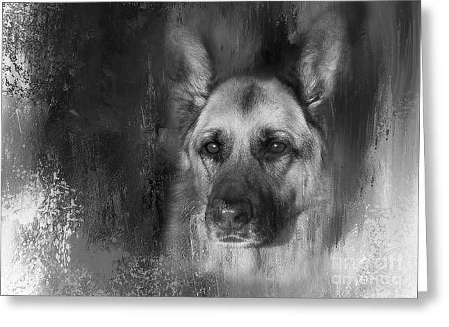 German Shepherd In Black And White Greeting Card by Eleanor Abramson
