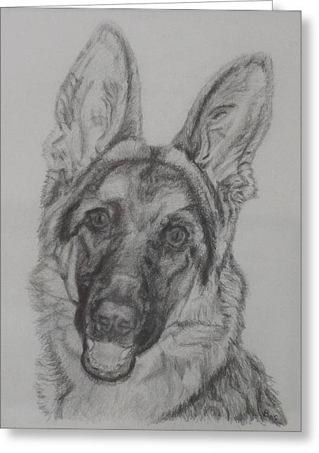German Shepherd  Greeting Card