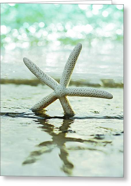 Get Your Feet Wet Greeting Card