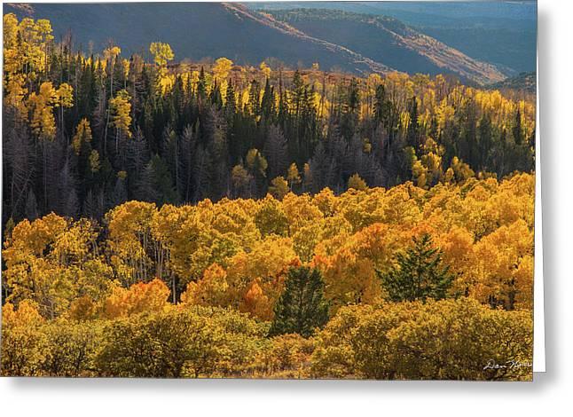 Geyser Pass Road, La Sal Mountains Greeting Card