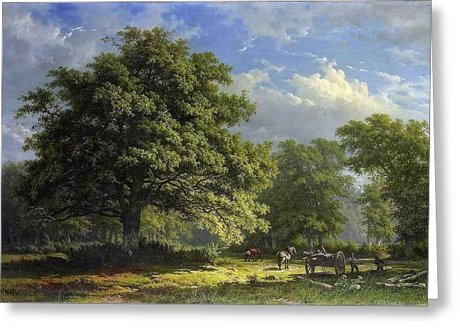 Gezicht In Het Bentheimse Bos Greeting Card by George Andries
