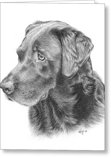 Ghira - Chocolate Lab Greeting Card by Heather Page