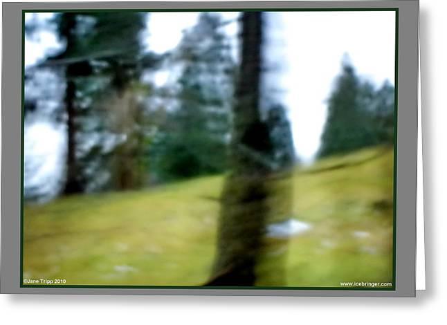 Ghost Behind Tree Greeting Card by Jane Tripp