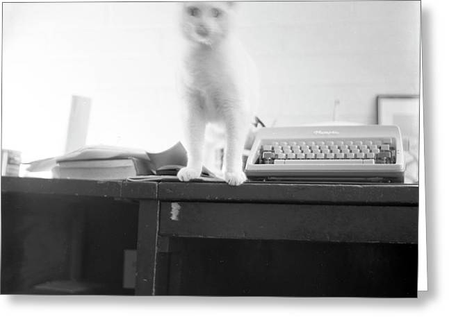 Ghost Cat, With Typewriter Greeting Card