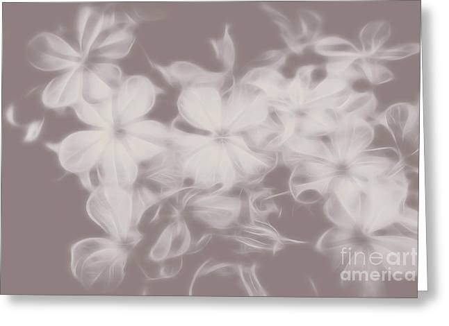 Ghost Flower - Souls In Bloom Greeting Card by Jorgo Photography - Wall Art Gallery