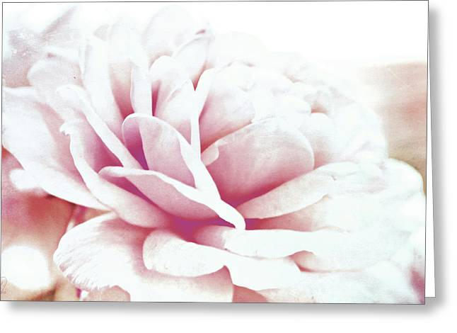 Greeting Card featuring the digital art Ghost Of Roses Past by Margaret Hormann Bfa