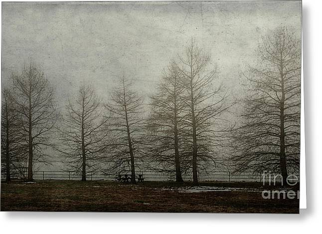 Ghost Trees Greeting Card by Terry Rowe
