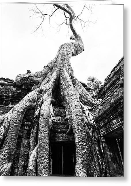 The Gnarled Hand Of Ta Promh Greeting Card
