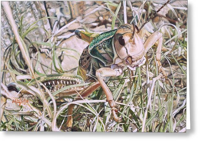 Giant Grasshopper Greeting Card