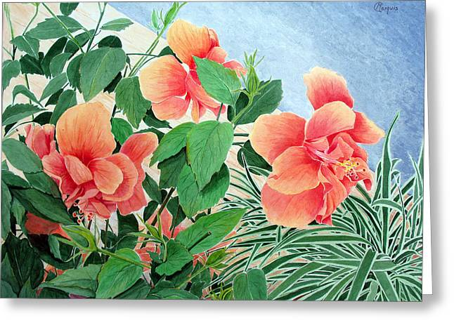 Giant Hibiscus Greeting Card by Colleen Marquis