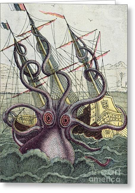 Creature Greeting Cards - Giant Octopus Greeting Card by Denys Montfort