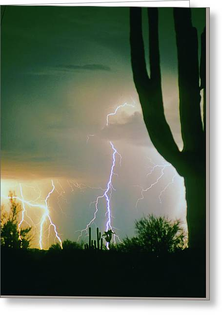 Giant Saguaro Cactus Lightning Storm Greeting Card by James BO  Insogna