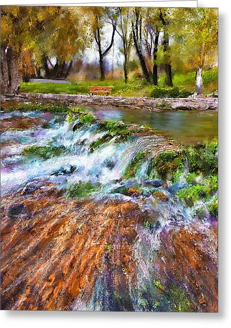 Giant Springs 2 Greeting Card by Susan Kinney