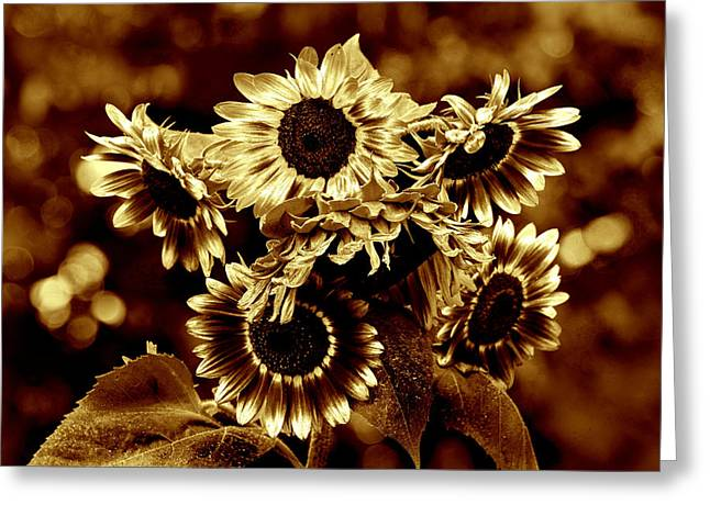 Giant Sunflowers Greeting Card by Kathleen Stephens
