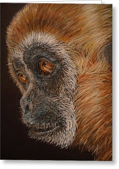 Gibbon Greeting Card by Karen Ilari