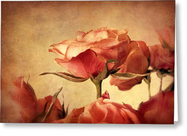Gilded Roses Greeting Card by Jessica Jenney