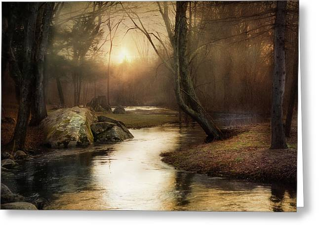 Greeting Card featuring the photograph Gilded Woodland by Robin-Lee Vieira