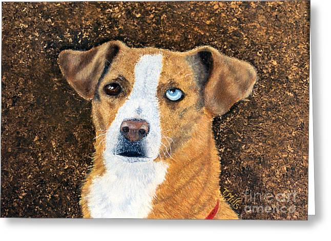 Greeting Card featuring the painting Ginger - Mixed Breed by Terri Mills