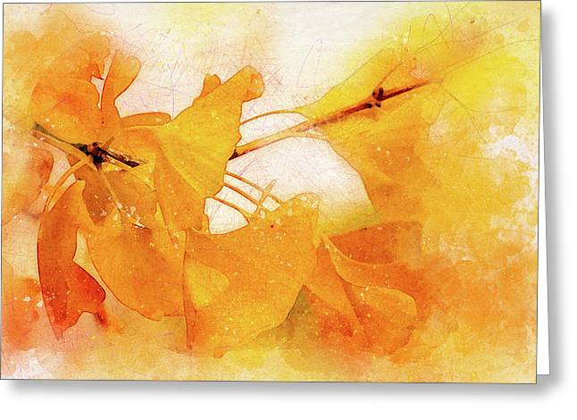 Ginkgo Abstraction Greeting Card by Terry Davis