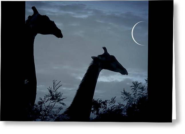 Giraffe Moon  Greeting Card