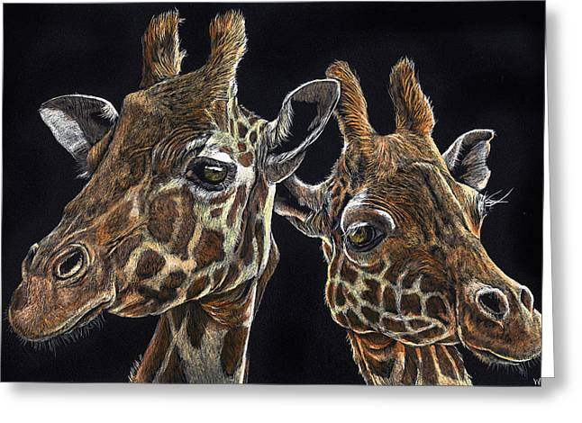 Giraffe Pair Greeting Card