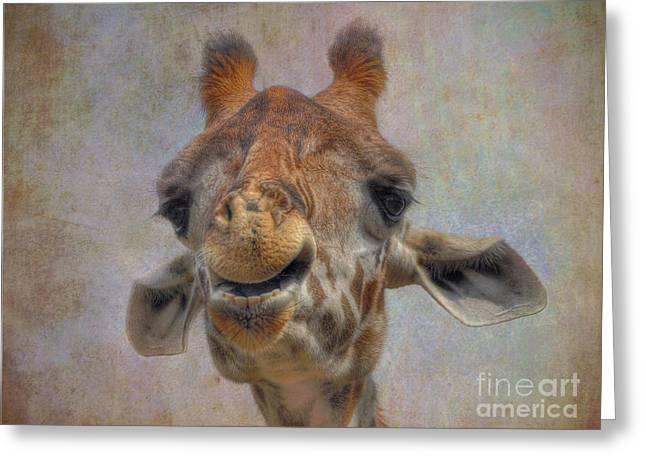 Greeting Card featuring the photograph Giraffe by Savannah Gibbs