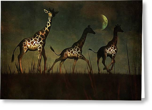 Giraffes Fleeing Greeting Card