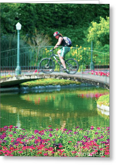 Girl And Bicycle Greeting Card by Gaspar Avila