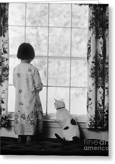 Girl And Cat At Window, C.1980s Greeting Card by H. Armstrong Roberts/ClassicStock