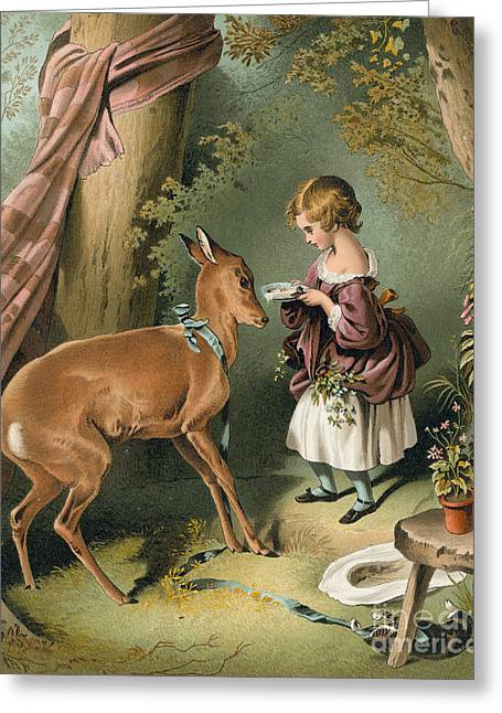 Girl Feeding A Deer Greeting Card