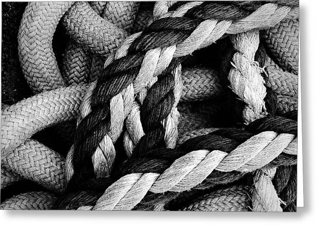 Give Them Some Rope 2 Greeting Card by Skip Hunt
