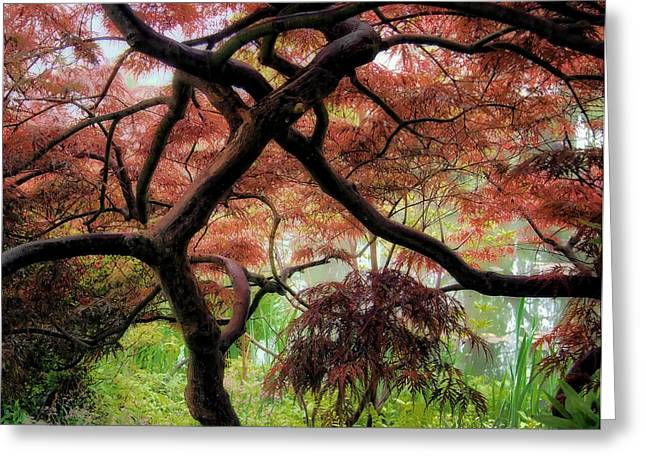 Giverny Gardens Greeting Card by Jim Hill
