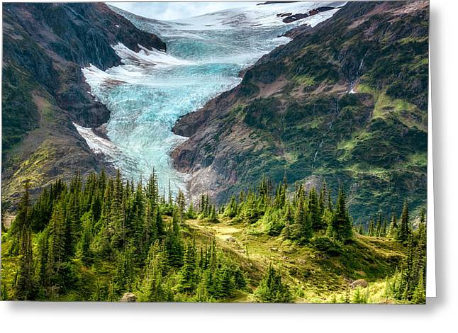 Greeting Card featuring the photograph Glacier In An Alpine Meadow by Claudia Abbott