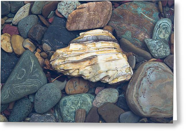 Glacier Park Creek Stones Submerged Greeting Card by John Daly