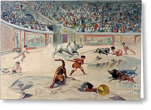 Gladiators Fighting Animals In The Circus At Pompeii Greeting Card by Antonio Niccolini
