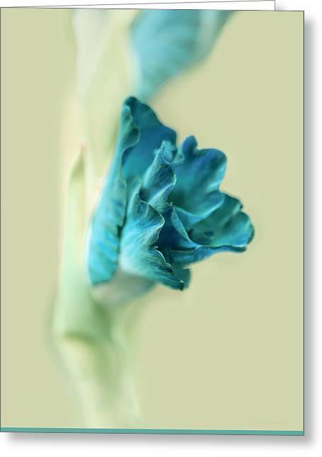 Gladiola Flower Beginnings Teal Greeting Card by Jennie Marie Schell