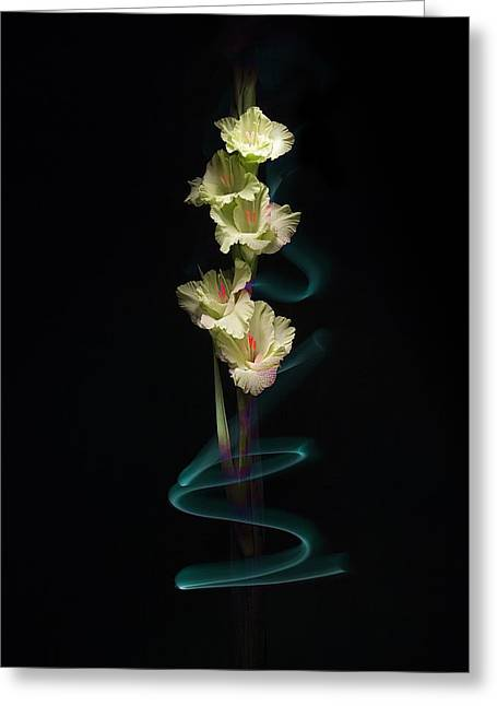 Greeting Card featuring the photograph Gladiolus Variation#02 by Richard Wiggins