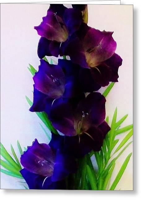 Gladiolas Greeting Cards - Glads Close up Greeting Card by Marsha Heiken