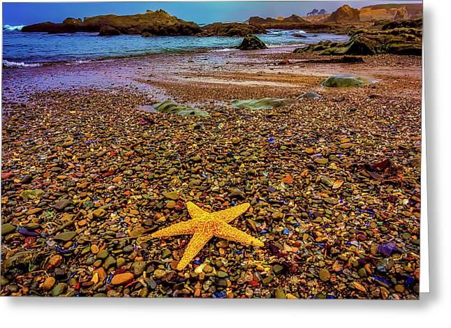 Glass Beach Starfish Greeting Card