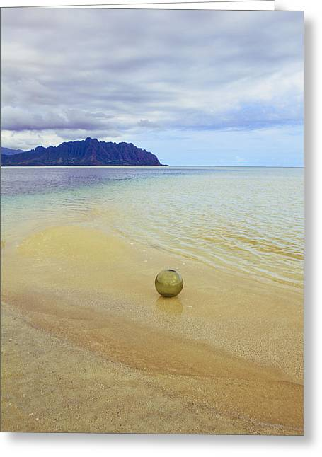 Glass Fishing Float Greeting Card by Tomas del Amo - Printscapes