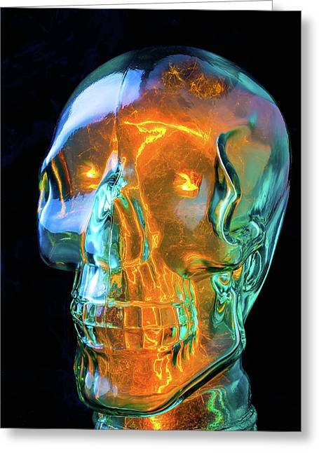 Glass Skull Greeting Card by Garry Gay