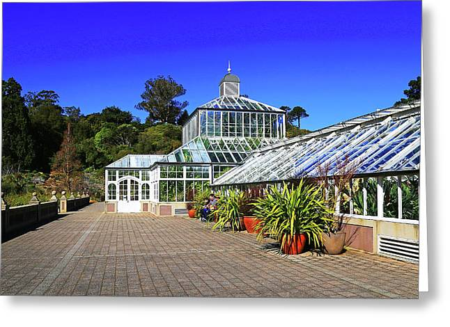 Glasshouse Entrance Greeting Card