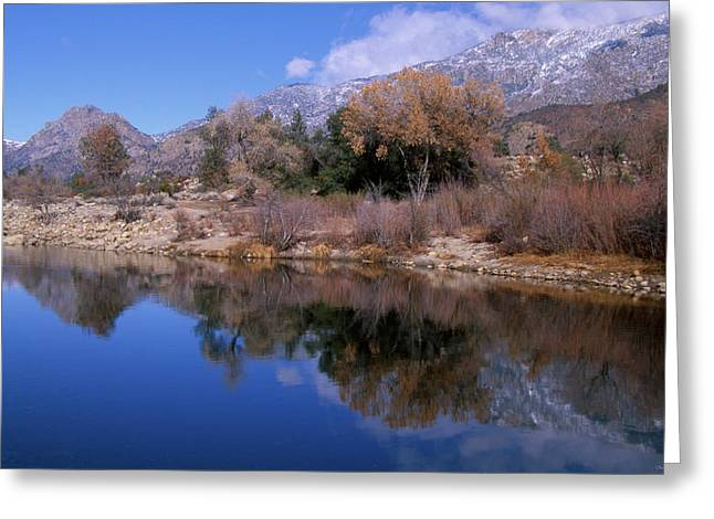 Glassy And Classy Greeting Card by Soli Deo Gloria Wilderness And Wildlife Photography